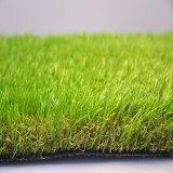 美しい庭の草の景色Ss