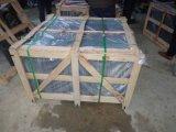 床または壁のための熱い販売の性質の石造りの緑のスレート