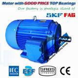 Motor elétrico da indução do compressor da eficiência Ye3 elevada
