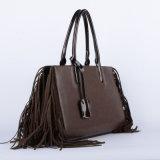 De Nieuwe Trendy Handtas van uitstekende kwaliteit van de Leeswijzer van de Handtassen van de Ontwerper (wt0005-2)