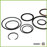 Standard Cylinder를 위한 테플론 Double Acting Pistion Seal /Seal Ring