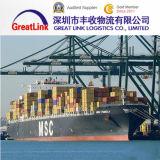 Frete de oceano de FCL/LCL de Guangzhou/Wuhan/Ningbo, China a Aqaba, Jordão