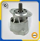 Heavy Machine를 위한 던지기 Iron Hydraulic Gear Pump