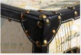 Neuer Laufkatze-Koffer des Entwurfs-Form-Laufkatze-Kasten-20inch mit Rädern