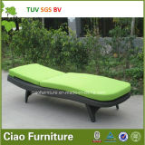 H jardín Lounger Chair de China para Hot Sell