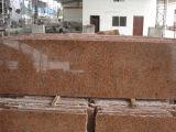 Granito di colore rosso più poco costoso G562 della cava della Cina, rivestimento murale del granito