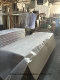 Porte en bois ignifuge de PVC pour les constructions commerciales