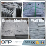 Cogumelo cinzento chinês da pedra do granito para a telha da parede da fachada