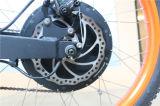 Bicyclette électrique inclinée bon marché populaire