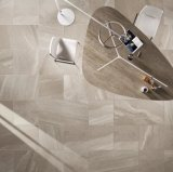 Metallina della Diana cheLucida le mattonelle di pavimento di ceramica della porcellana (GCT6300)