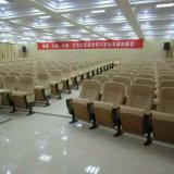De Stoel van het auditorium met het Gelijktijdige Systeem van de Interpretatie (r-6129)