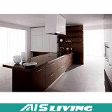 Muebles de madera del sistema de la diapositiva del cajón de la cabina del grano del diseño moderno (AIS-K056)