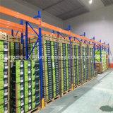 Quarto de armazenamento frio modular desde 1982 para frutas e verdura
