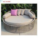 Lusso esterno Sunbed del rattan del giardino della mobilia del patio C-2016