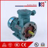 Трехфазный мотор AC Atex электрический с льготной ценой
