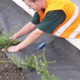 Anti-Unkrautvlies tissu de Nonwovens de la lutte contre les mauvaises herbes d'horizontal pp Spunbond