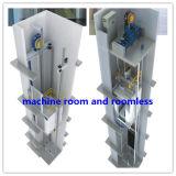 Bon ascenseur de passager de décoration avec la traction sans engrenages