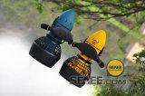 Motos aquáticas Waterscooters Motor elétrico para Scooter Ss3001 à venda