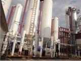 De vloeibaar gemaakte Vergasser van de Biomassa