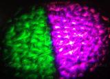 LEDの透かしの効果ライト