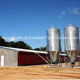 Подгонянная конструкция фермы в доме цыплятины с профессиональным автоматическим оборудованием