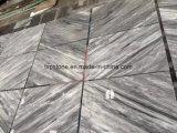 Lajes grandes de mármore italianas de Bardiglio Nuvolato para o revestimento, parede