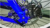 Torque central bicicleta elétrica da bateria do frasco de 26 polegadas, E-Bicicleta da montanha 250W