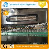Máquina de rellenar del animal doméstico de la botella de fruta de la bebida completa del zumo