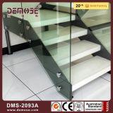 Doble de acero placas de vidrio Escaleras de madera (DMS-2093)