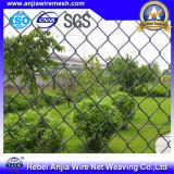 Elettro Galvanized Chain Link Fence con ISO9001 per Building Materials