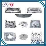 OEM van de hoge Precisie het Maken van de Vorm van het Aluminium van de Douane (SY0001)