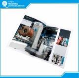 Gloss Art Paper Offset Printing A4 Folheto