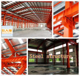 Aves domésticas House Construction em Steel Structure com Low Price
