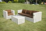Insieme esterno del sofà della mobilia del patio di lusso