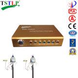 直接電光保護のためのTstlp Eseの避雷器