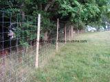 Загородка фермы загородки злаковика