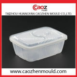 플라스틱 얇은 벽 음식 콘테이너 또는 사발 형