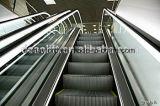 쇼핑 센터를 위한 높은 안전 에스컬레이터