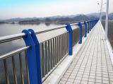Los pasamanos del puente dedicaron el tubo de acero inoxidable 304