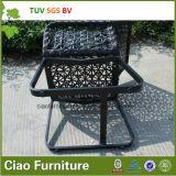 H- стул сада Китая Hotsell напольный