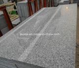 Azulejo de suelo gris gris claro del granito G603