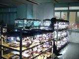 Jogo ESCONDIDO auto luz H1 H3 H4 H7 H8 H9 H11 H13 9005 9006 da lâmpada do bulbo do xénon
