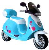 De Rit van jonge geitjes op de Rit van de Motorfiets op Stuk speelgoed