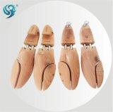 Árvore de madeira luxuosa da sapata da qualidade barata popular da venda