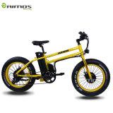 20*4.0 250W 500W 750Wの脂肪質のタイヤの電気バイク