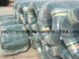 PVC Coated Iron Wire de qualité dans le prix concurrentiel