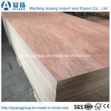 madera contrachapada comercial de 1220*2440*18m m Bintangor para los muebles