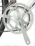 منافس من الوزن الخفيف سبيكة يتسابق درّاجة