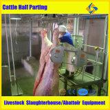 Halal 가축 도살 장비