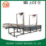 フルーツ及び野菜処理機械か義務のWahing機械Tsxq-50